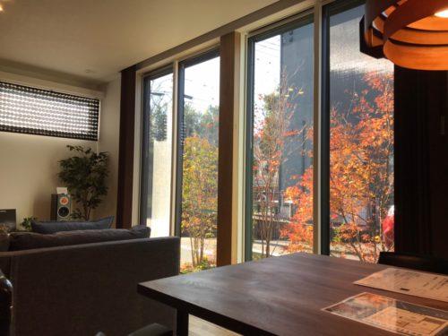 天井までの窓から四季の移ろいを絵画のように感じられる